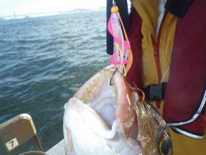 鳴門釣り船 愛海 鯛ラバ